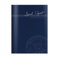 2013 Dnister Annual Report