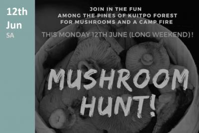 Mushroom Hunt in SA